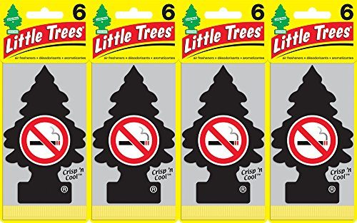Little Trees No Smoking Air Freshener, Pack of 24