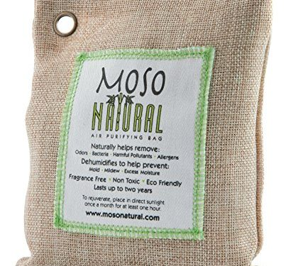 Moso Natural Air Purifying Bag. Odor Eliminator for Cars, Closets, Bathrooms and Pet Areas. Natural Color, 200-G