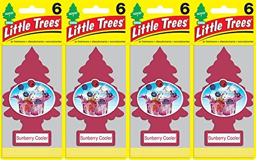 Little Trees Sunberry Cooler, Pack of 24