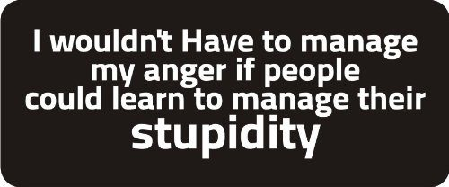 I Wouldn't Have To Manage My Anger If People Could Learn To Manage Their Stupidity 1 1/4″ x 3″ Hard Hat Biker Helmet Stickers Bs274 – 3