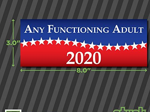 printed vinyl decal sticker – Any Functioning Adult 2020 – 8.0″x3.0″
