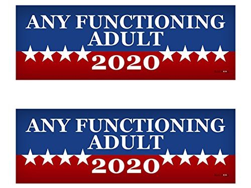 2 PACK! Any Functioning Adult 2020 Funny Bumper Sticker 3″ x 9″ Car Truck Vinyl Decal Political Presidential Election Made In USA
