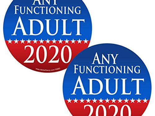 #FS683 LAMINATED Political Funny Bumper Car Truck Window Election Vinyl Decal USA – 2 Pack ROUND Any Functioning Adult 2020 2 Pack Stickers