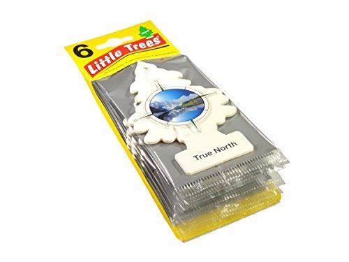 Little Trees Car Air Freshener 6-Pack True North