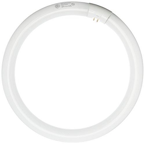 Top 10 Circline Fluorescent Bulb – Fluorescent Tubes
