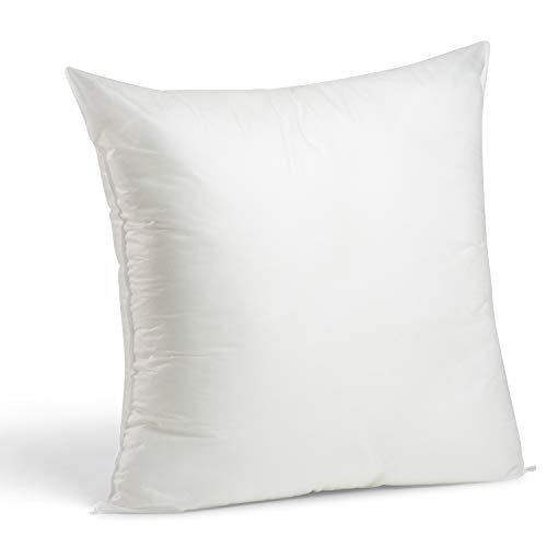 Top 10 24 x 24 Pillow Insert – Throw Pillow Inserts