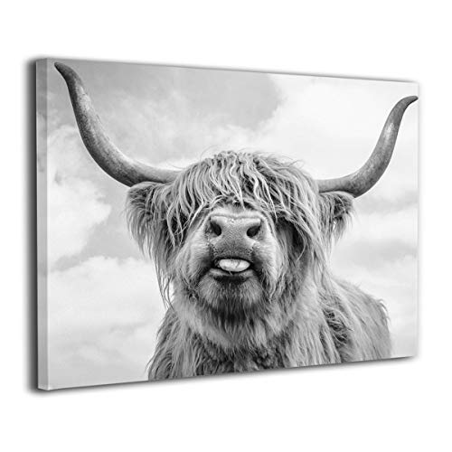 Top 9 Longhorn Wall Decor – Posters & Prints