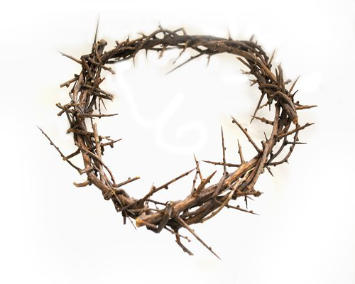 Top 7 Crown of Thorns Wreath – Home Décor Accents