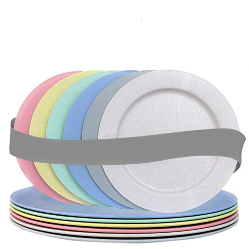 Top 10 unbreakable Plates microwave and Dishwasher Safe – Dinner Plates