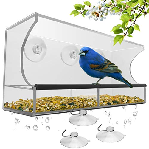 Top 10 Bird Feeder Stand – Kitchen & Dining Features