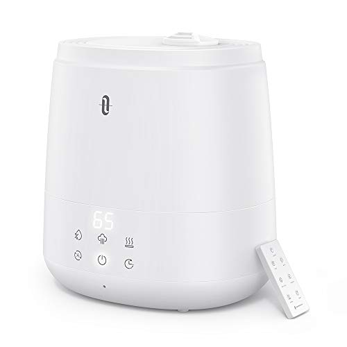 Top 10 Warm and Cool Mist Humidifier – Humidifiers