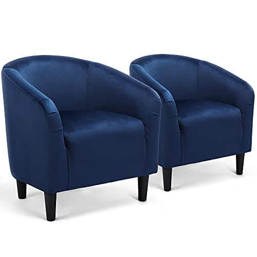 Top 10 Accent Chair Set of 2 Blue – Living Room Chairs
