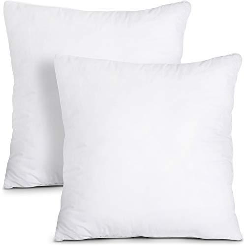 Top 10 18 x 18 Throw Pillow – Throw Pillow Inserts