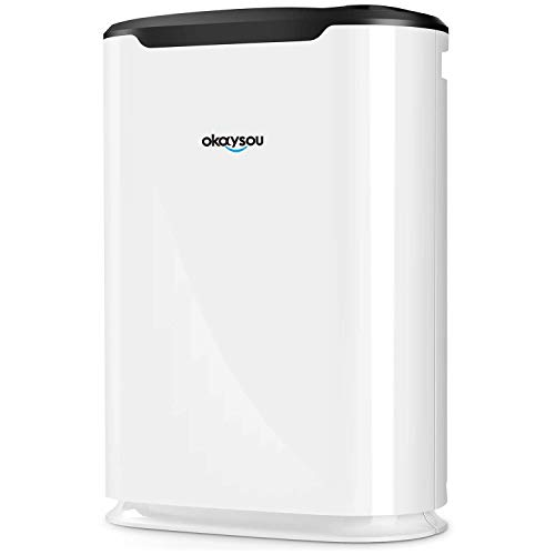 Top 10 VOC Air Purifiers – HEPA Filter Air Purifiers