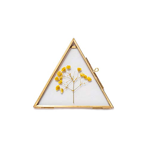 Top 5 Pressed Flower Wall Art – Wall & Tabletop Picture Frames