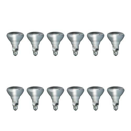 Top 10 BR30 Flood Light Bulb – Incandescent Bulbs