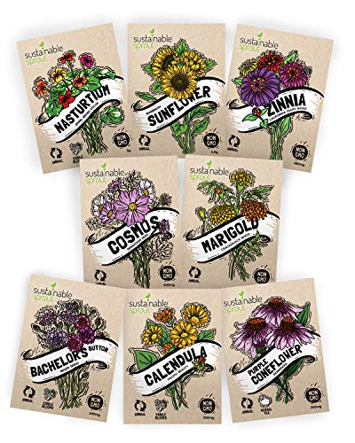 Top 9 Packs of Sunflower Seeds – Home & Kitchen Features