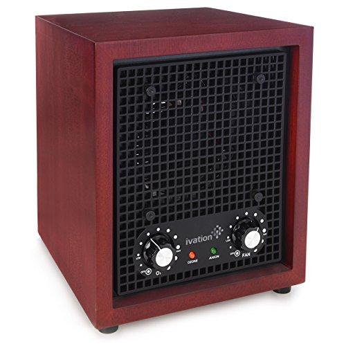 Top 10 Ionizer Air Purifier – Home Air Ionizers